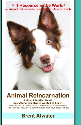 Animal Reincarnation: Everything You Always Wanted to Know! about Pet Reincarnation plus ''how to'' techniques to see, feel & communicate with your deceased pet
