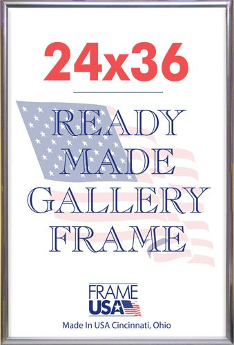 Amazoncom Frame Usa Deluxe Poster Frame 24 X 36 Silver Posters