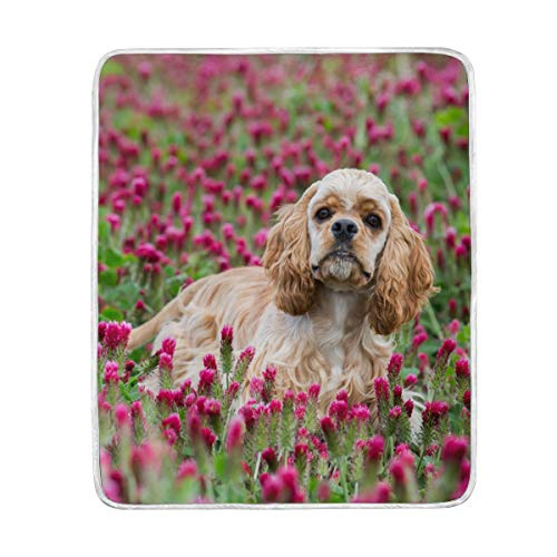 My Daily American Cocker Spaniel Flower Throw Blanket Polyester Microfiber Lightweight Couch Bed Blanket 50x60 inch