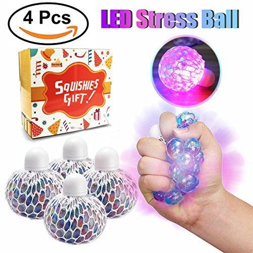 Walter Products B10503 Spermatogenesis Model