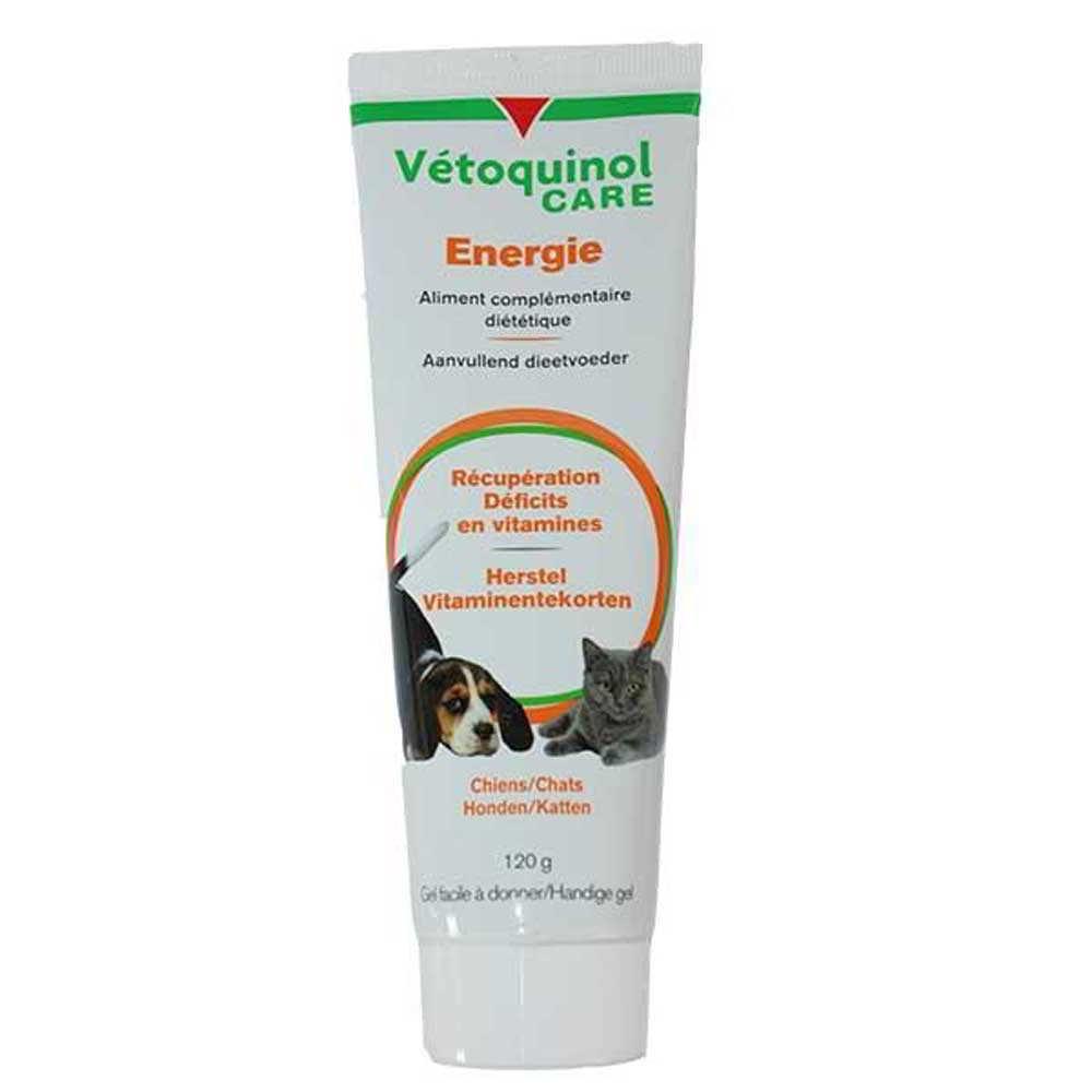 Vetoquinol VTQ Care Energie Gel pour Chien et Chat Tube de 120 g