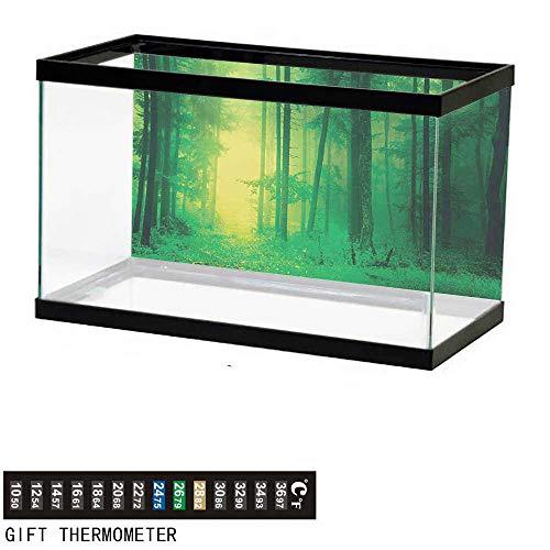 (wwwhsl Aquarium Background,Mystic,Fantasy Springtime Forest Tall Trees with Magical Fairytale Twilight Art Print Print,Green Fish Tank Backdrop 30