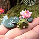 COOLTOP Miniature Fairy Garden Dollhouse Miniature Plant Pots Bonsai Craft Micro Landscape DIY Decor Set (frog set)