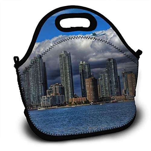Dejup Lunch Bag Toronto Tote Reusable Insulated Lunchbox, Shoulder Strap with Zipper for Kids, Boys, Girls, Women and Men