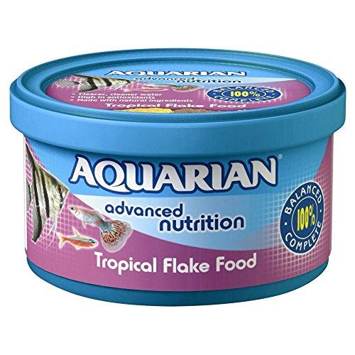 Animal Jam Small Animal Supplies