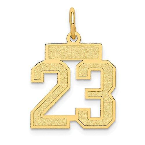 JewelrySuperMart Collection 14k Yellow Gold Number Twenty-Three Charm Pendant with Satin Finish - # 23 - Yellow Gold - -