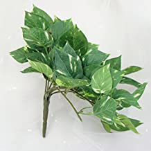 Lily Garden Artificial Maple Ivy Epipremnum Aureum Leaf Hangings Plant Set of 3 (Scindapsus Aureus)