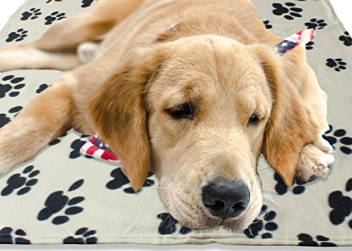 Large-Fleece-60-x-39-Inch-Pet-Blanket-with-Paw-Print-Pattern-Animal-Supplies-by-bogo-Brands