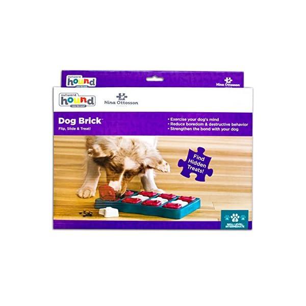 Outward Hound Nina Ottosson Puzzle Brick Dog Toy 5