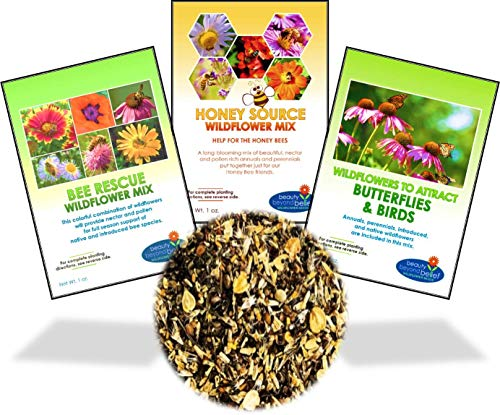 - Wildflower Seeds Bulk Perennial Packets - 8 BONUS Gardening eBooks - 87,000 Open-Pollinated, Non-GMO, No Fillers, Annual, Flower Seed For Fall Planting, Bees, Humming Birds, Butterflies, Pollinators