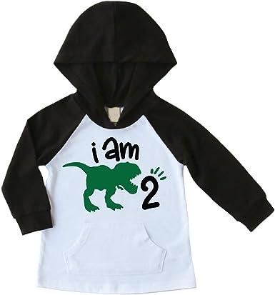 Bump and Beyond Designs 2nd Birthday Boy Shirt Two Year Old Birthday Boy Hoodie