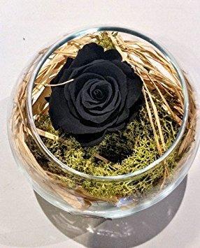 Black Rose ewig in der Glaskugel