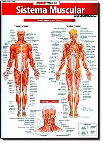 Sistema Muscular. Avançado: Vincent Perez: Amazon.com.mx: Libros