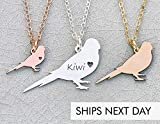 Parakeet Necklace - IBD - Wild Bird Mom Gift Animal Jewelry - Choose Chain Length - Pendant Size Options - Metal Type Sterling Silver 14K Rose Gold Filled