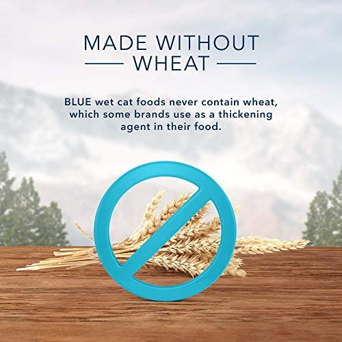 Blue Buffalo Wilderness Wild Delights High Protein Grain Free, Natural Adult Meaty Morsels Wet Cat Food 5