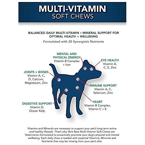 Dog Natural Multivitamin Soft Chew Usa