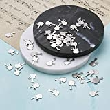 Pandahall 50pcs Guitar 304 Stainless Steel Charms