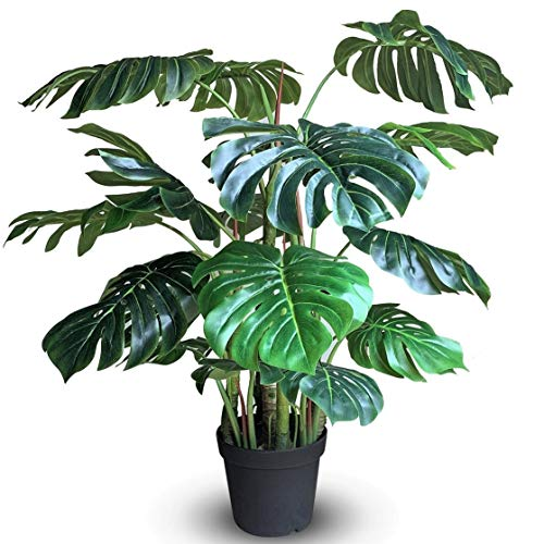 Haus And Sage Artificial Tree For Home And Office Decor Monstera Deliciosa Floor Palm 47 X 39 Benefits Of Realistic Indoor Fake Plants