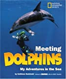 Meeting Dolphins