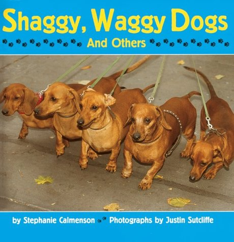 Shaggy, Waggy Dogs (And Others) -