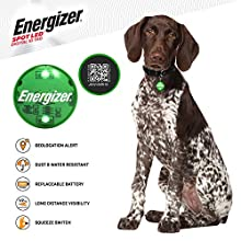 SPOT LED Energizer Digital Pet QR Recovery ID Tag, IP65 Water and Dust Resistant with Half Mile Visibility, Green, 94567