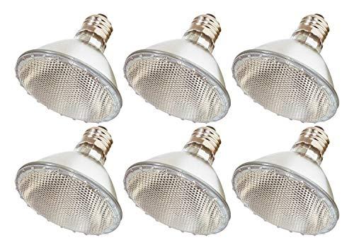 Pack Of 6 39PAR30/NFL - 39 Watt High Output (50W Replacement) PAR30 Flood Short Neck - 120 Volt Halogen Light -