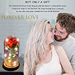 URBANSEASONS-Beauty-and-The-Beast-Rose-Red-Silk-Rose-That-Lasts-Forever-in-a-Glass-Dome-with-LED-LightsGift-for-Mothers-Day-Valentines-Day-Wedding-Anniversary