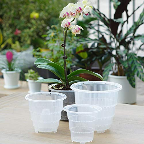 4 x Growth Technology Orchid Pot Clear 15cm garden green house plant food