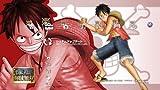 One Piece: Kaizoku Musou (Ps3 Japan Import)