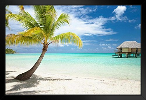 Palm Tree And Huts On Tropical Beach Tahaa Island Photo Art Print Framed Poster 18X12 By Proframes
