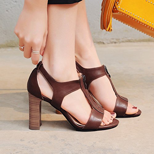 Carolbar Womens Retro Office Lady T-Strap Open Toe Zip High Heel Sandals Brown 9AMnDzzMJ