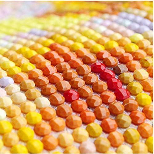 Peinture Au Diamant,5D Bricolage Diamant Peintures Champ De Fleurs Color/ées Diamant Mosa/ïque Pleine Ronde Strass Diamant Broderie Couture Artisanat 40X50Cm