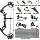 Tongtu Compound Bow and Arrows Hunting Bow Accessories Kit Package Right Hand 19-70Lbs