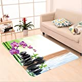 Nalahome Custom carpet th Spring Water and Health Giving Properties Asian Eastern Way of Getting Better Art Photo Multi area rugs for Living Dining Room Bedroom Hallway Office Carpet (6' X 9')