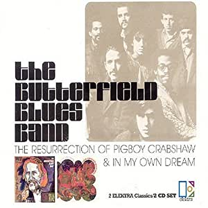Paul Blues Band Butterfield Resurrection Of Pigboy