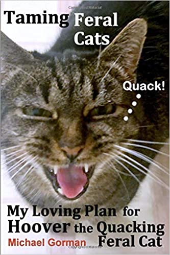 Taming Feral Cats — My Loving Plan for Hoover the Quacking Feral Cat