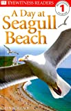 A Day at Seagull Beach, Karen Wallace and Dorling Kindersley Publishing Staff, 0789440032