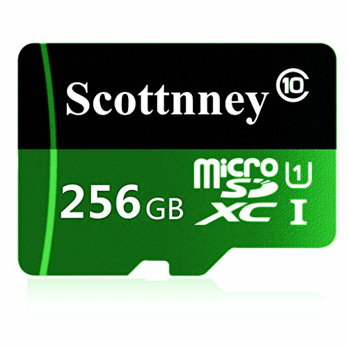 Scottnney Micro SD Card, 256GB Class 10 Micro SDXC with Adapter(S230-S1)