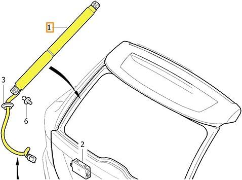 Dorman 76819 Automatic Transmission Shift Lever Knob for Select Chevrolet//Pontiac Models