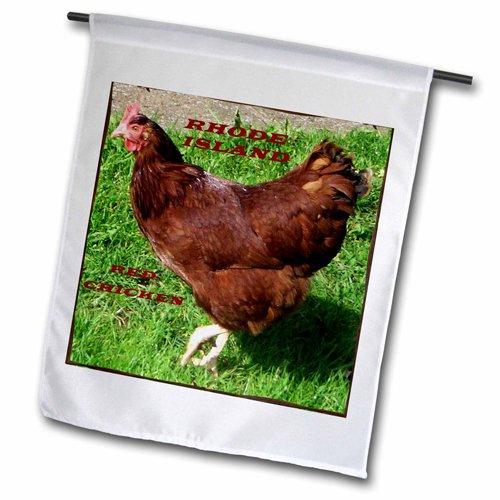 """3dRose fl_50942_2 """"State Bird of Rhode island Red Chicken..."""