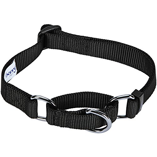 Blueberry Pet 19 Colors Safety Training Martingale Dog Collar, Black, Small, Heavy Duty Nylon Adjustable Collars for Dogs