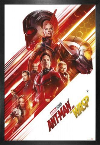 1art1 Ant-Man Póster con Marco (Madera DM) - and The Wasp ...