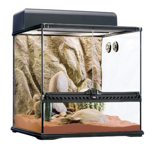 Exo Terra PT2605 Desert Habitat Kit, Medium by Exo Terra