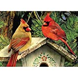 WEIYP 5D Diamond Painting Kits for Adults Full Drill The Cardinals Embroidery Rhinestone Painting
