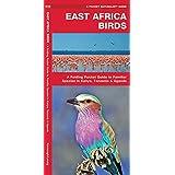 East Africa Birds: A Folding Pocket Guide to Familiar Species in Kenya, Tanzania & Uganda (Pocket Naturalist Guide Series)