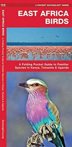 East Africa Birds: A Folding Pocket Guide To Familiar Species In Kenya, Tanzania & Uganda (A Pocket Naturalist Guide)
