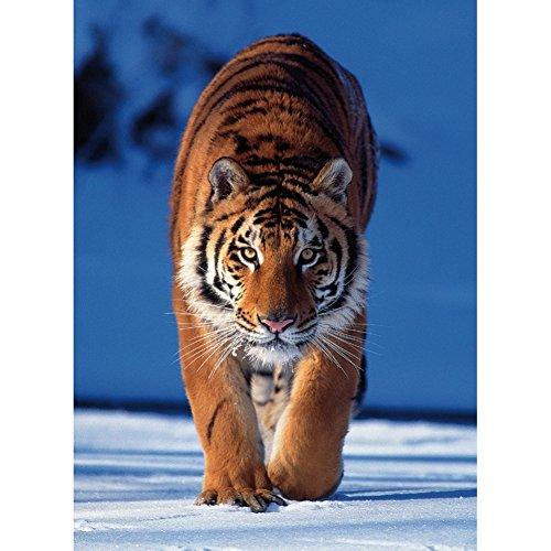 Jigsaw Puzzle - 260 Pieces - Mini : Tiger (Jig Saw Costume)