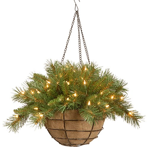 National Tree 20 Inch Tiffany Fir Hanging Basket with 50 Battery Operated Warm White LED Lights (TF-300-20HB-1) (Lighted Baskets Hanging)
