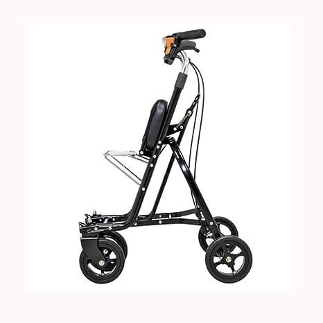 AA-SS-Elderly Standard Walkers Ancianos Caminantes estándar Carrito portátil Mayor para Carrito de