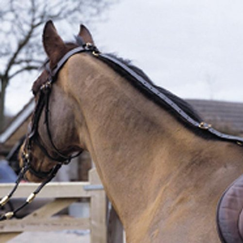 Aerborn Daisy Reins (safety rein), In Black, Tactile Web ()